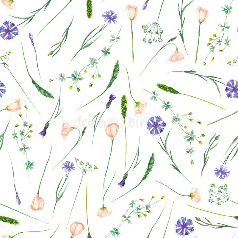 Seamless pattern with wildflowers, eustoma and cornflowers stock illustration