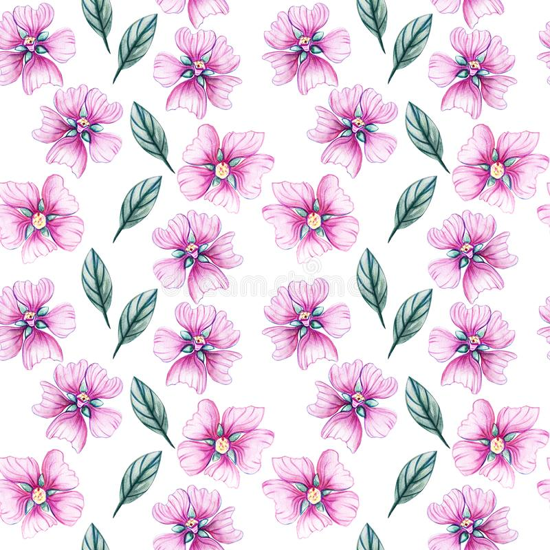 Seamless pattern with wildflowers royalty free illustration