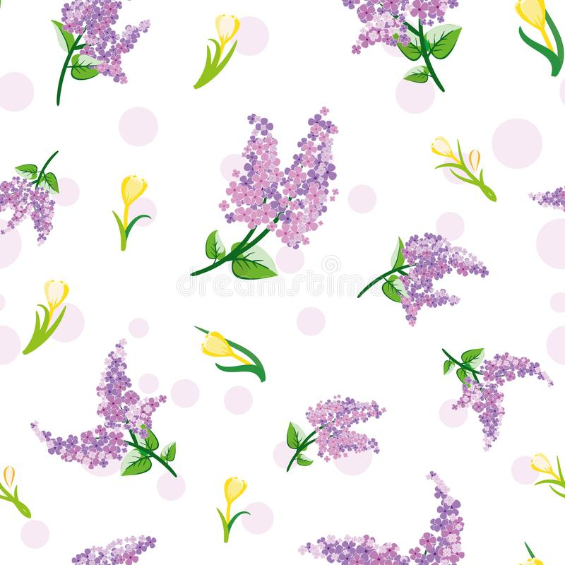Seamless pattern with willow and crocus flowers. Vector background. royalty free stock photo