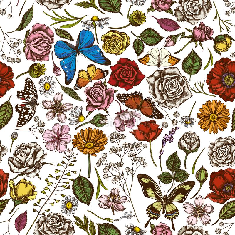 Free Seamless Pattern With Hand Drawn Colored Shepherd`s Purse, Heather, Iris Japonica, Sakura, Gypsophila, Chamomile, Almond Royalty Free Stock Images - 179192079