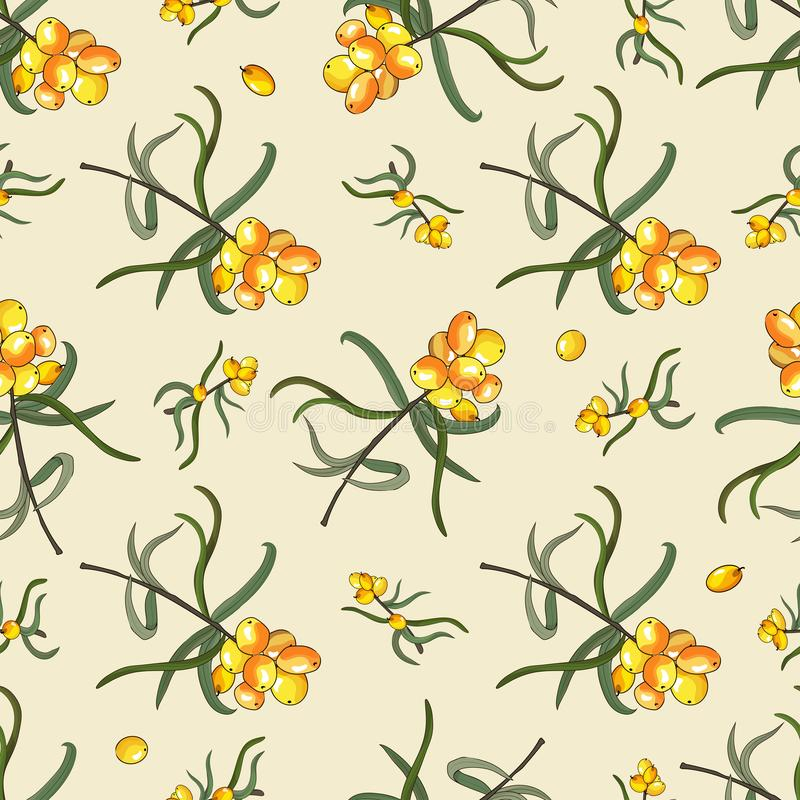 Free Seamless Pattern With Sea Buckthorn Berries On A Branch Stock Photography - 159723642
