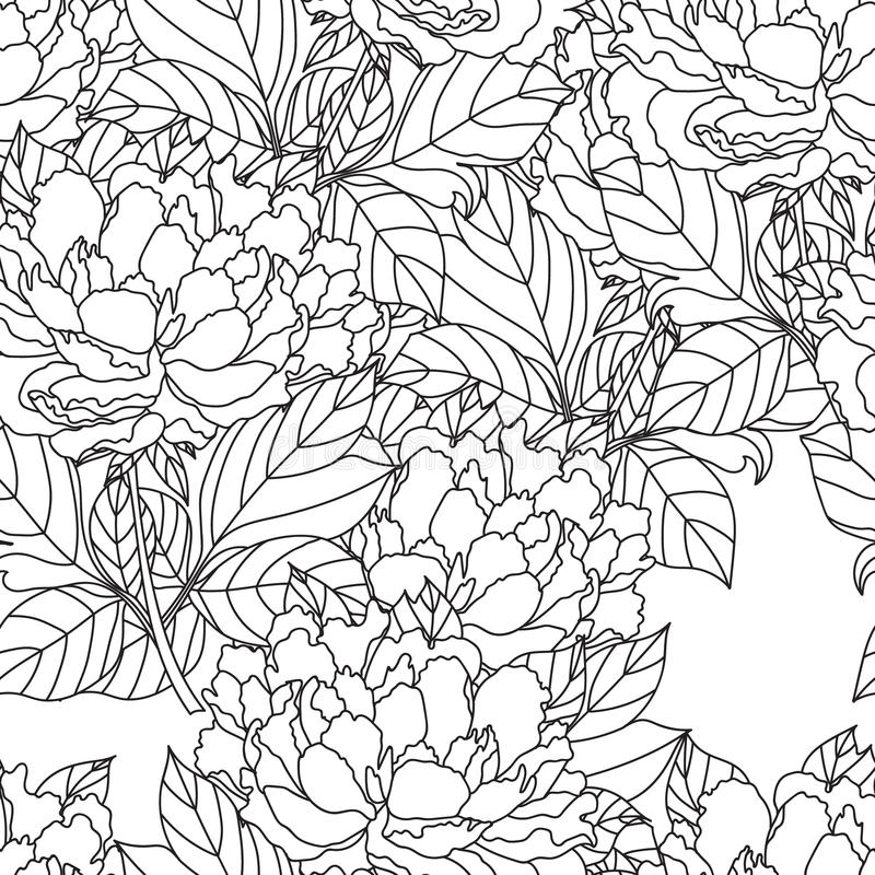 Seamless Peony bouquet. Vector. Coloring book page for adults. Hand drawn artwork. Love bohemia concept wedding. Seamless Peony bouquet.Vector. Coloring book vector illustration