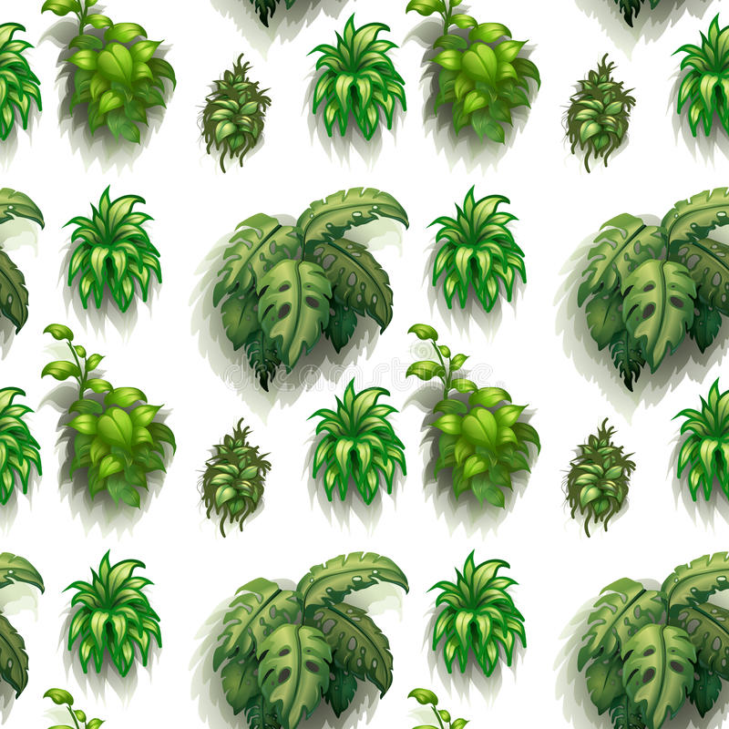 Seamless Plants Stock Vector