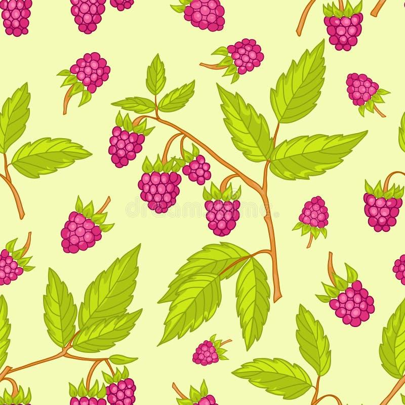 Seamless Raspberries Pattern. Stock Images