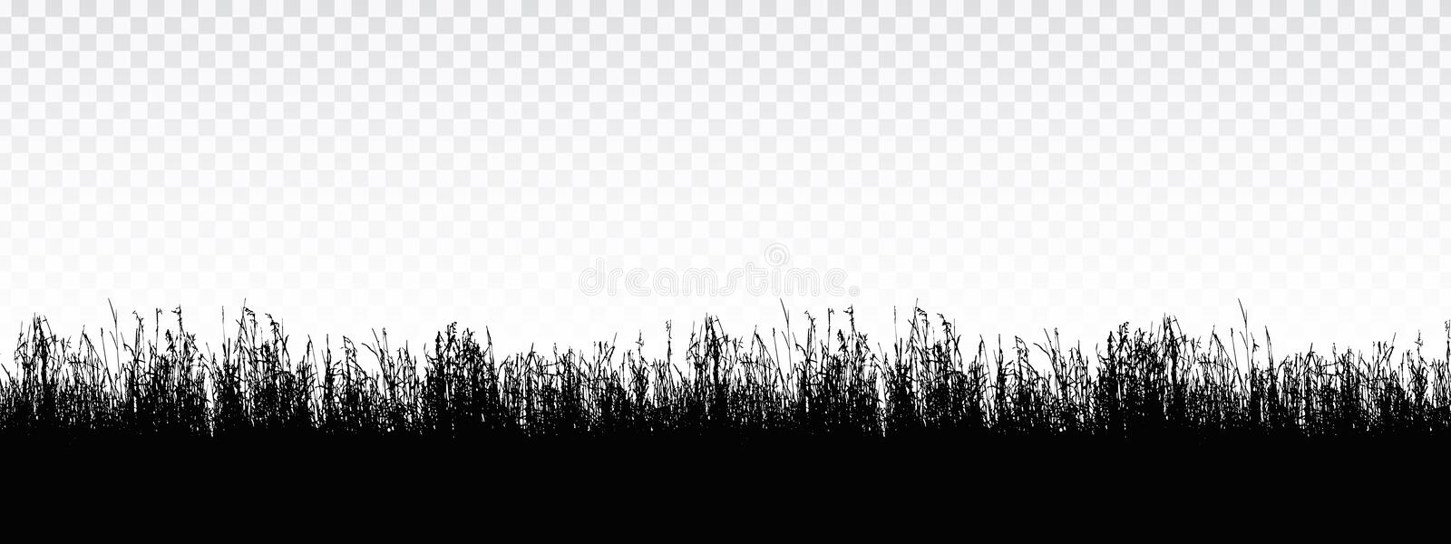 Seamless realistic illustration of a grass stalk or lawn, isolated on a transparent background, vector. Seamless realistic illustration of a grass stalk or lawn vector illustration