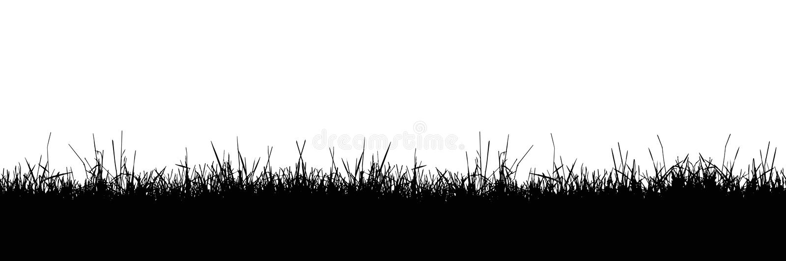 Seamless realistic illustration of a grass stalk or lawn, isolated on a white background, vector. Seamless realistic illustration of a grass stalk or lawn vector illustration
