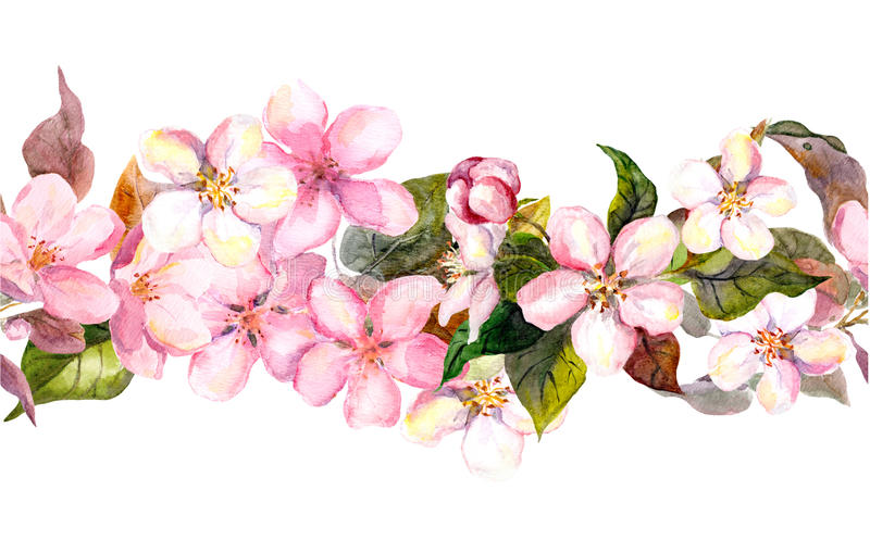 Seamless repeated floral border - pink cherry sakura and apple flowers. Watercolor stock illustration