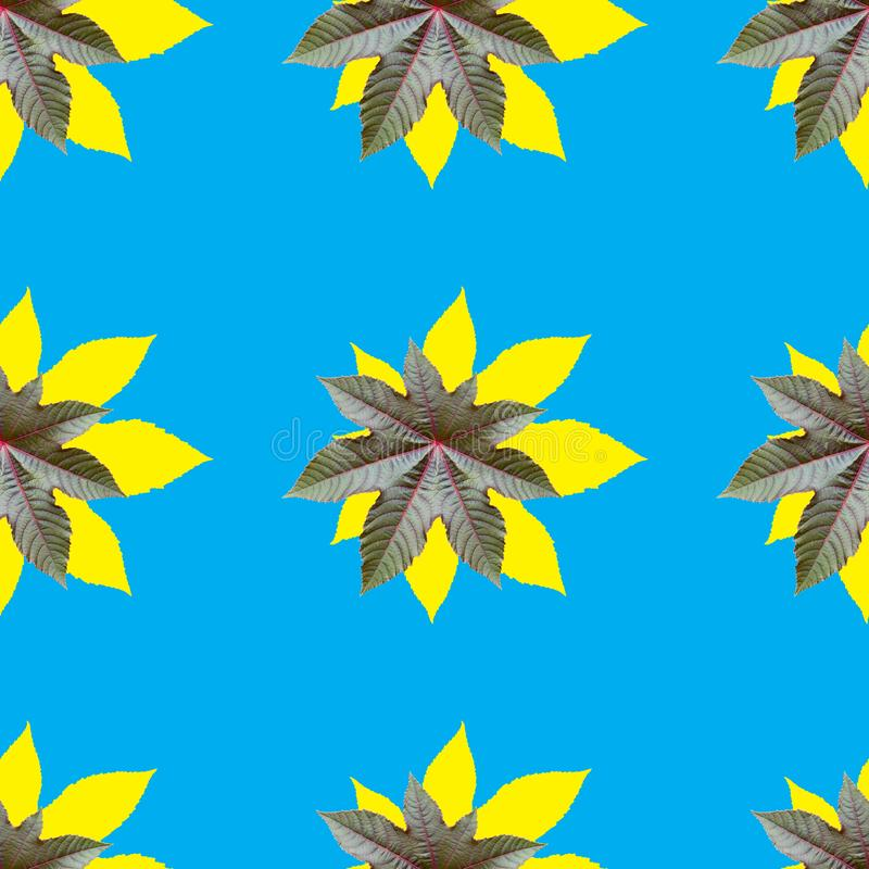 Seamless repeating pattern from ricinus communis yellow with blue color. Seamless repeating pattern from castor oil plant yellow with blue color, flower royalty free stock photos