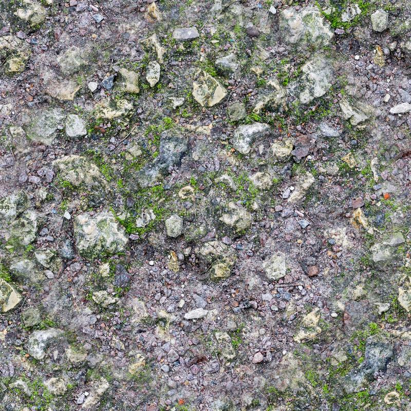 Seamless rocky ground with moss texture. background. stock images