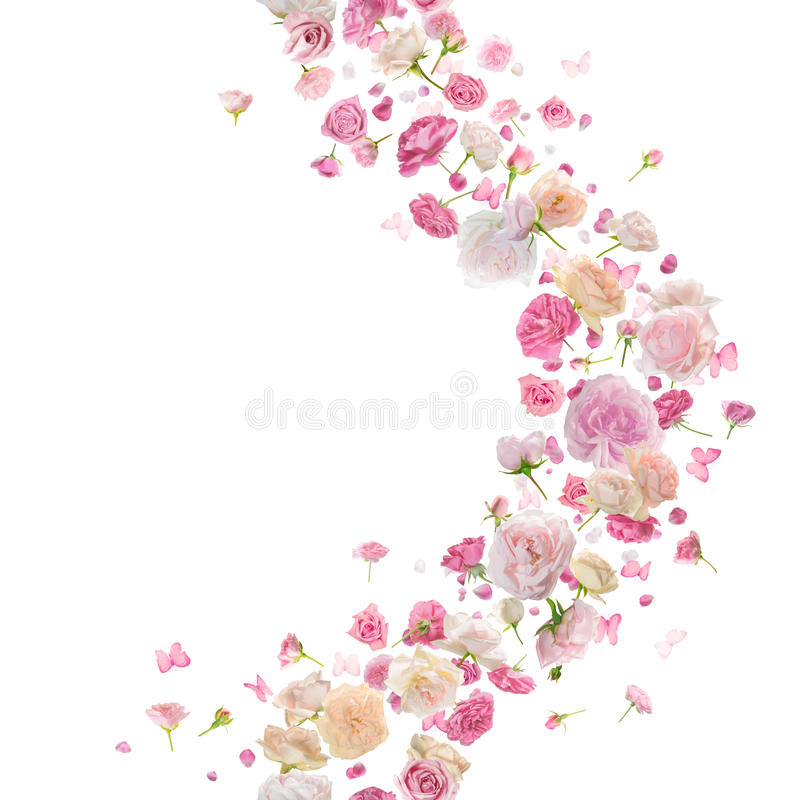 Seamless Roses and Butterlies Breeze Curve royalty free stock photos