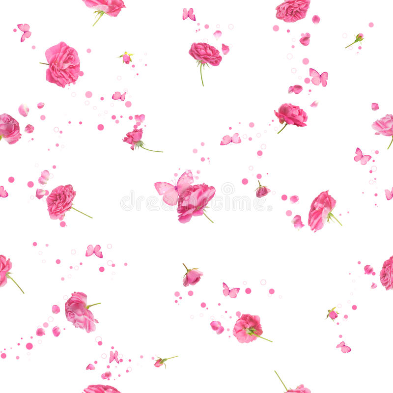 Seamless roses in pink royalty free stock photos