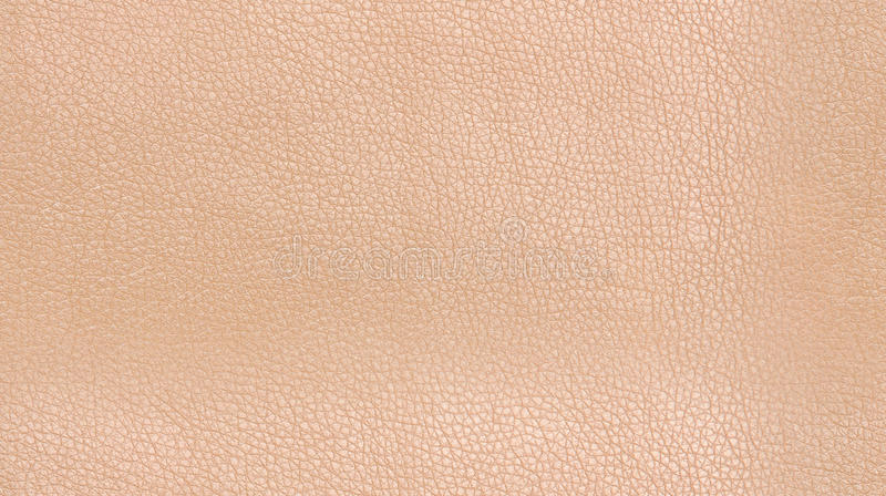 Download Seamless skin stock photo. Image of up, closeup, material - 27347672