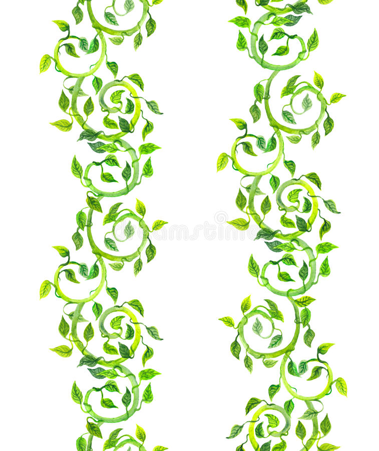 Seamless stripe borders - spring green leaves and scrolls. Watercolor stock illustration
