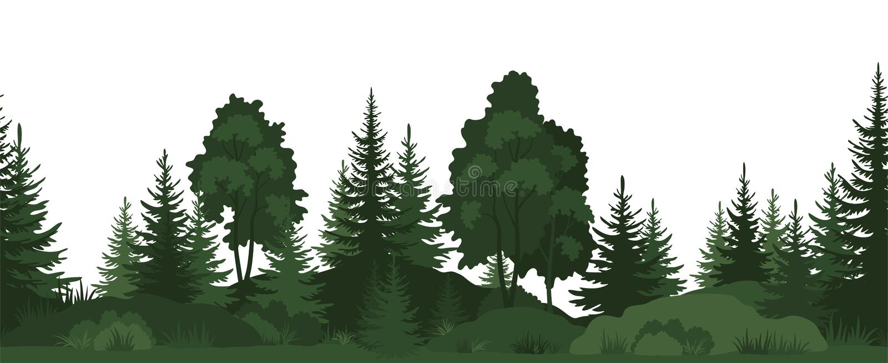 Seamless, Summer Forest stock illustration