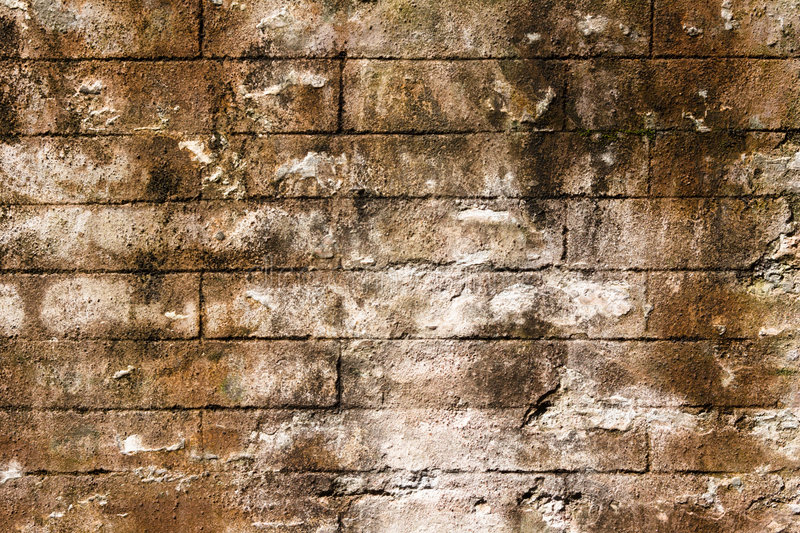 Download Almost Seamless Surface Of Bri Stock Photo - Image of browse, brown: 2319480