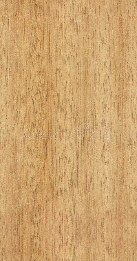 Free Seamless Teak Texture Royalty Free Stock Photos - 18207958