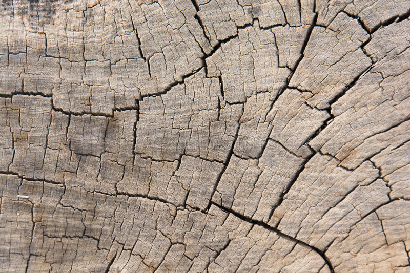 Seamless texture background old wood cracks royalty free stock photos
