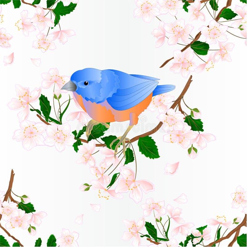 Seamless texture bird Bluebird small thrush songbirdons on an branch wild Cherry wild Cherry blue spring background vintage. Vector illustration editable hand royalty free illustration