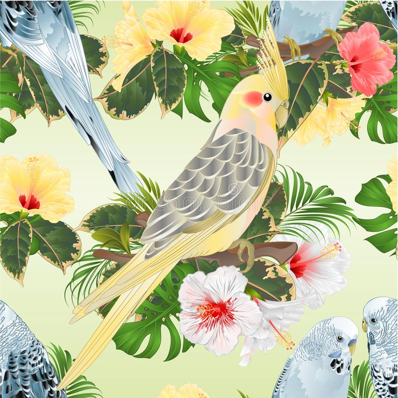 Seamless texture birds corella and Budgerigars blue pets parakeets on a branch bouquet with tropical flowers hibiscus, palm,philo royalty free illustration