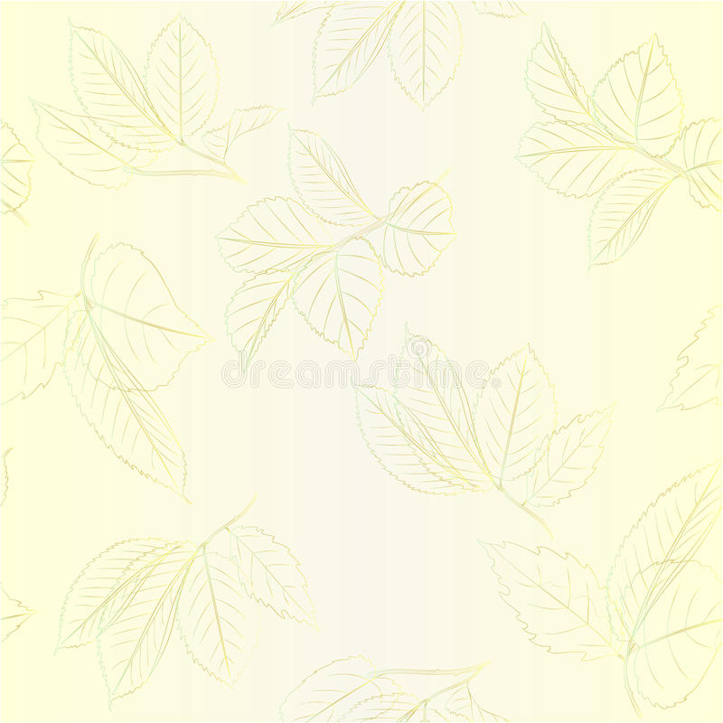 Seamless texture contour branches with leaves of roses vintage vector editable illustration vector illustration