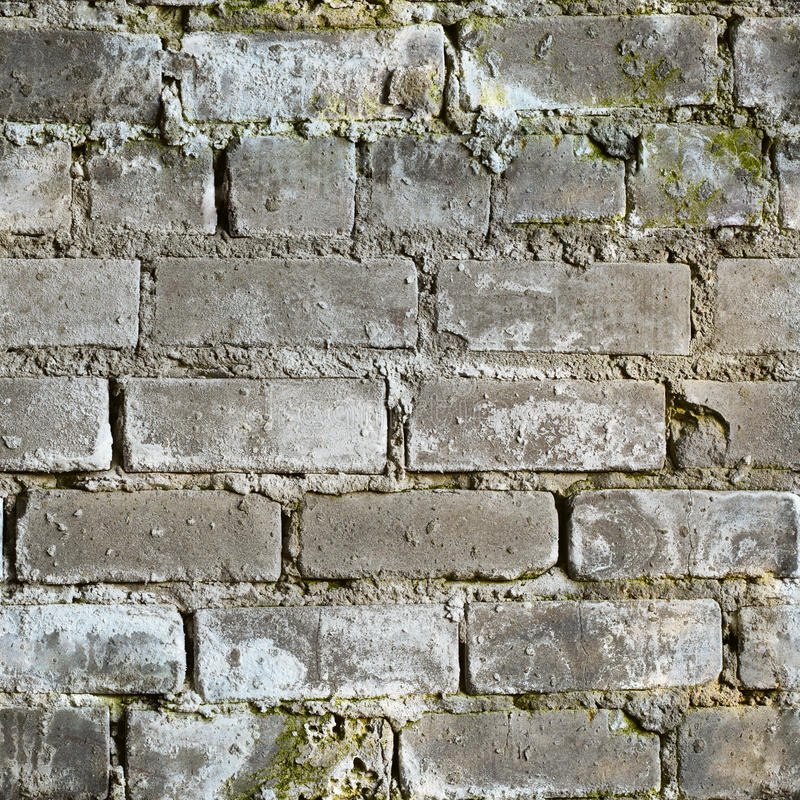 Download Seamless Texture From Dirty Moldy Brick Wall Stock Photo - Image: 13348668