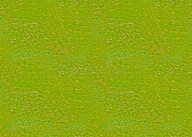Seamless texture, endless canvas - Trampled old lawn with barely sprinkled young spring grass, greenery, lawn, spring, coolness. Seamless texture, endless canvas stock photo