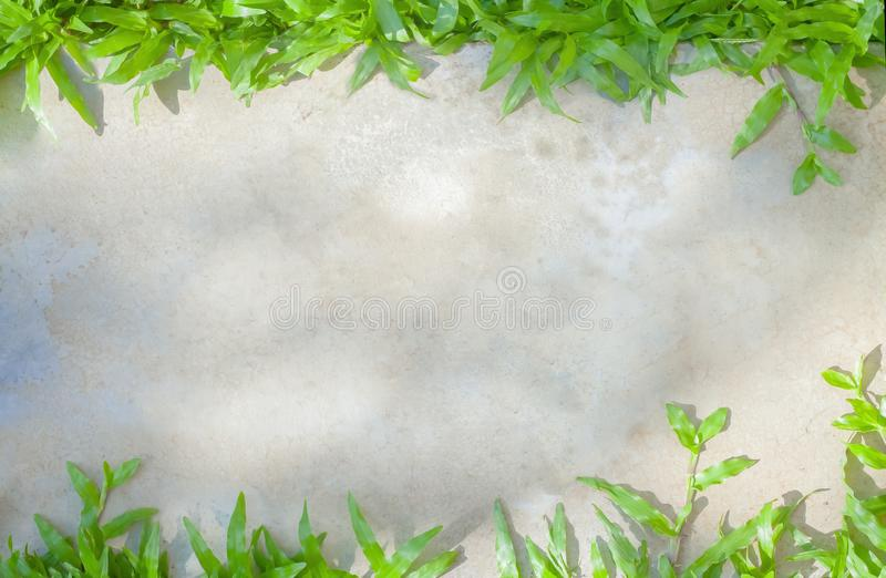 Seamless texture gray cement and concrete pavement covered green grass. Abstract frame design on outdoor polished background. Seamless texture gray cement and stock photography