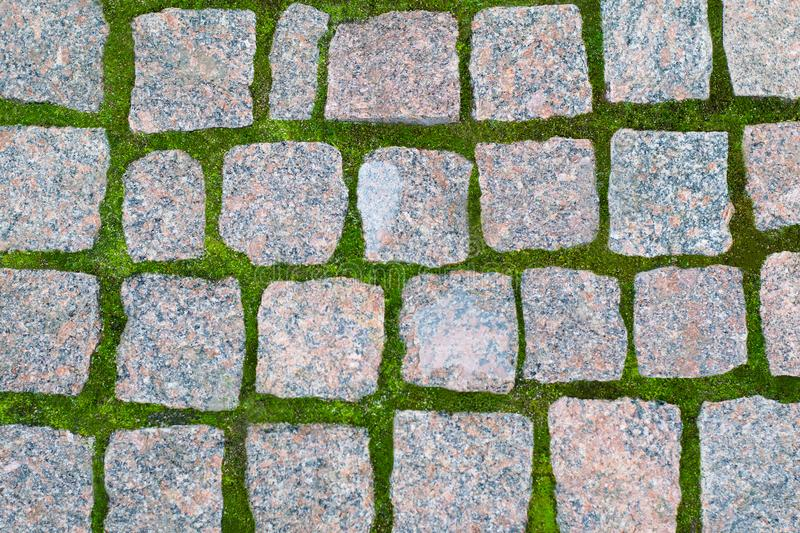 seamless texture of a paving stone track on a green grass can be