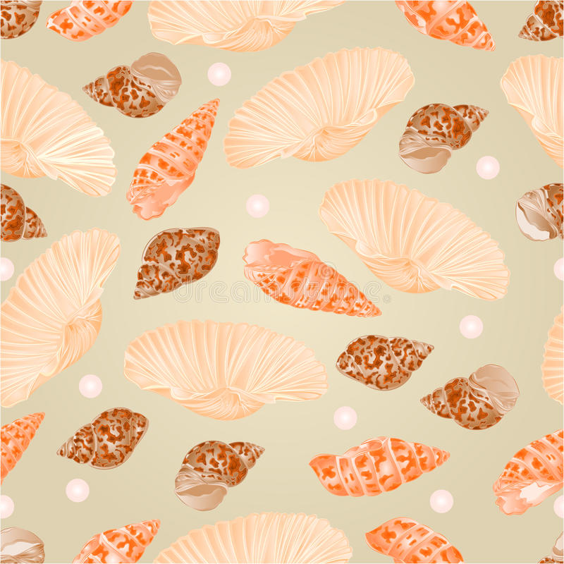 Seamless texture seashells and pearls vector. Seamless texture seashells and pearls natural background vector Illustration royalty free illustration