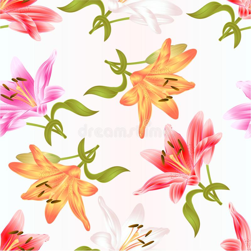 Seamless texture stem Lily flower white pink yellow red Lilium candidum on a white background vintage vector illustration. Editable Hand draw stock illustration