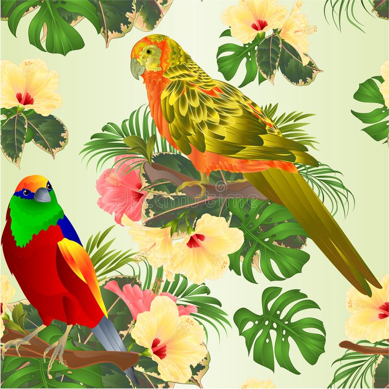 Seamless texture tropical bird and sun Conure Parrot with tropical flowers hibiscus palm,philodendron watercolor background vin royalty free illustration