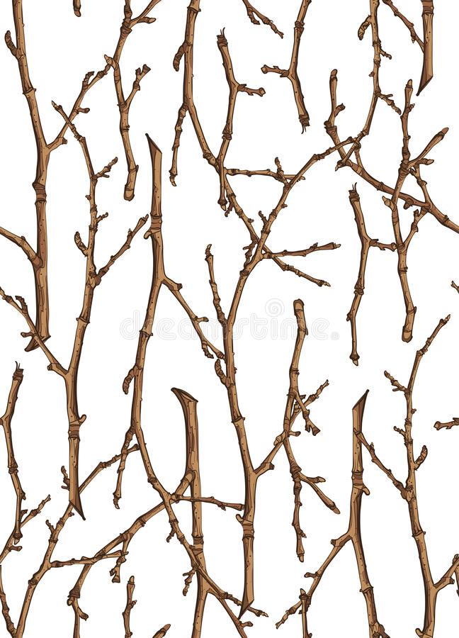 Seamless texture of twigs. On a white background royalty free illustration