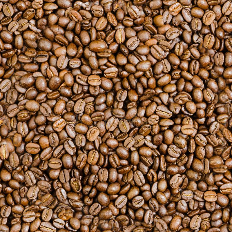 Seamless Tile of Coffee Beans. Brown Coffee Beans Seamless Tile Background for your Advertising Copy royalty free stock images