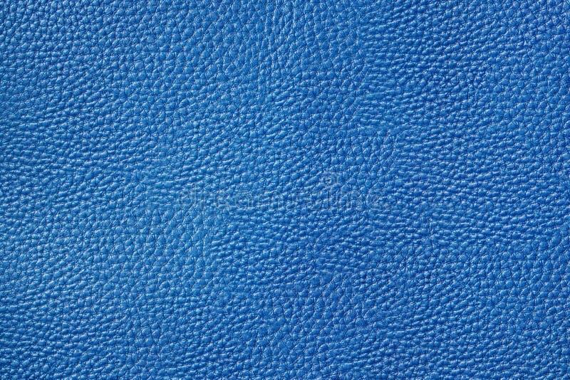 seamless tileable hudtextur royaltyfri foto