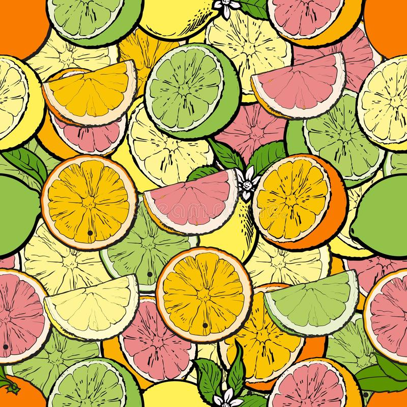 Seamless citrus pattern with kiwi, orange and pomelo sketch vector illustration. Seamless tropical exotic pattern with citrus fruits such as kiwi, orange and vector illustration