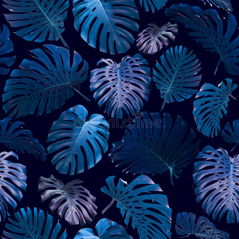 Seamless Tropical Jungle Leaves Background vector illustration