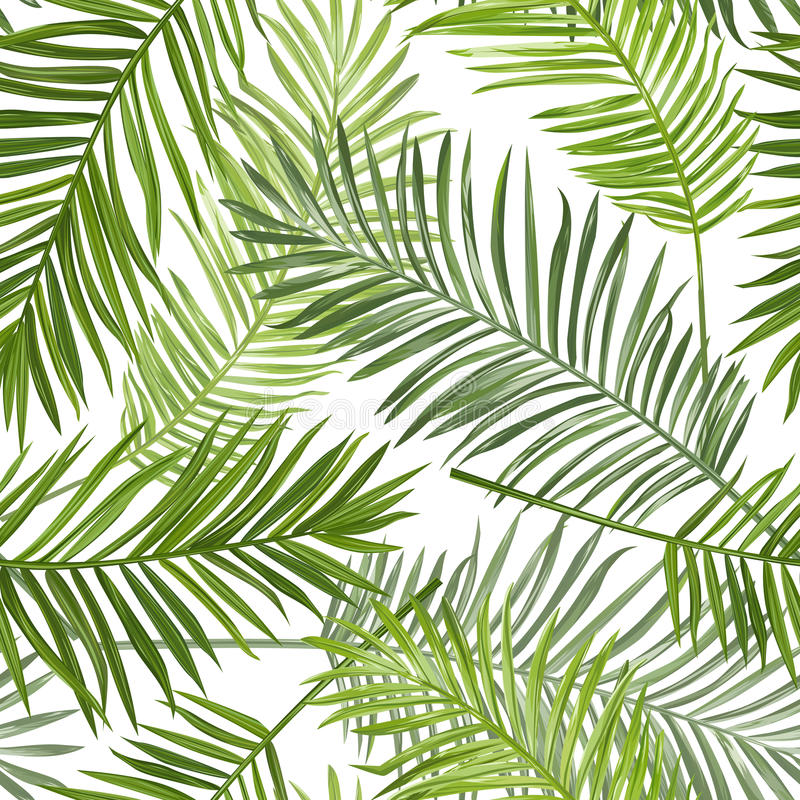 Seamless Tropical Palm Leaves Background stock illustration
