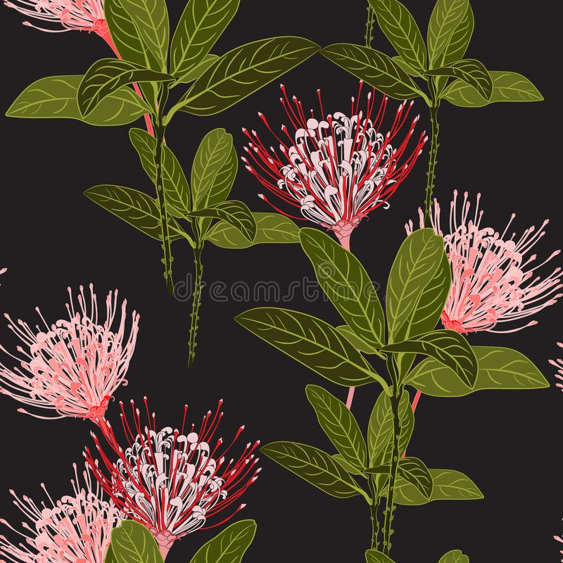 Seamless tropical protea flowers and exotic green leaves pattern on black background. Exotic print. Vintage motives stock illustration