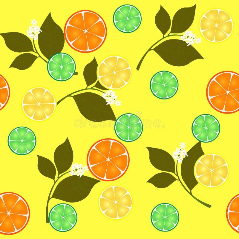 seamless upprepande design med citrusfrukter stock illustrationer