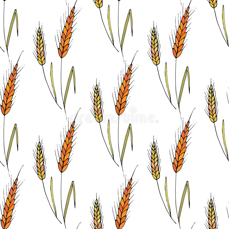Seamless vector background with wheat spikelets. vector illustration