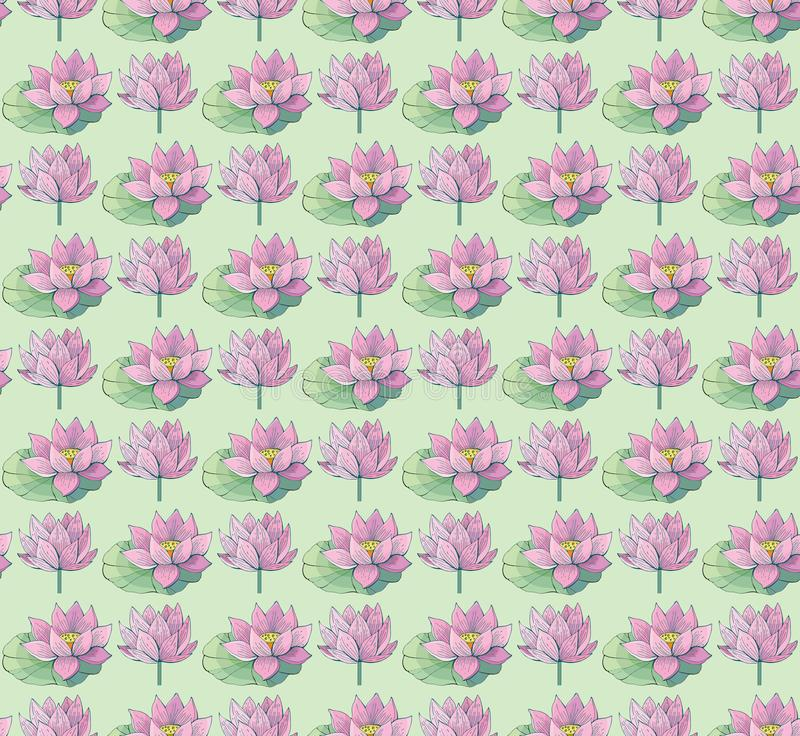 Seamless vector pattern of gentle pink Lotus flowers and leaves. Water lily. Vintage style. hand drawn Botanical illustration. Good design for printing royalty free stock photos