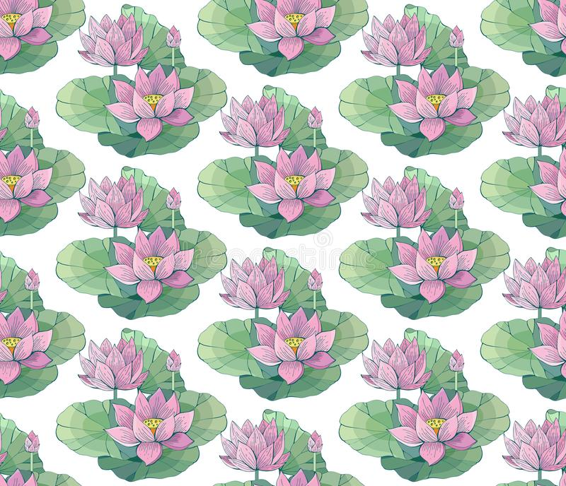 Seamless vector pattern of gentle pink Lotus flowers and leaves. Water lily. Vintage style. hand drawn Botanical illustration. Good design for printing vector illustration