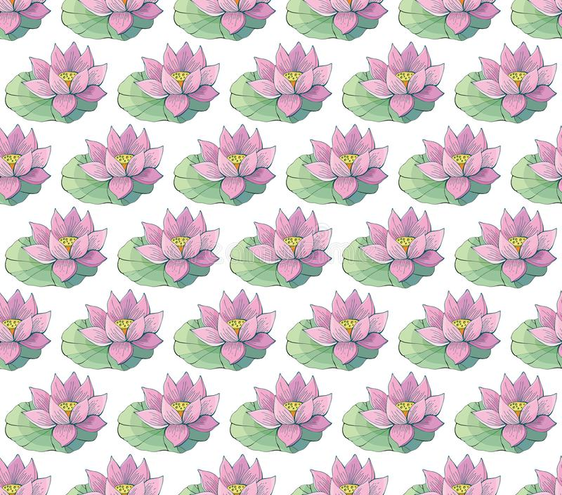 Seamless vector pattern of gentle pink Lotus flowers and leaves. Water lily. Vintage style. hand drawn Botanical illustration. Good design for printing royalty free illustration
