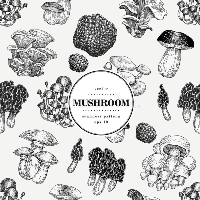 Seamless vector pattern with mushrooms. Hand drawn background with different fungus kinds. Vector banner template. Retro illustration vector illustration