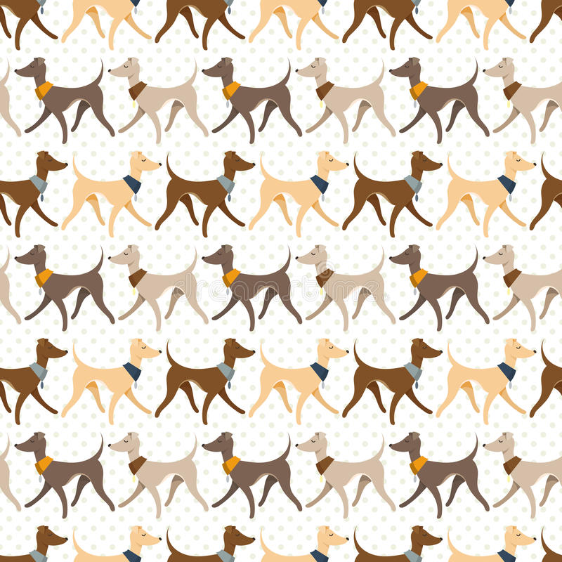 Seamless Vector Pattern with Pretty Walking Italian Greyhounds stock illustration