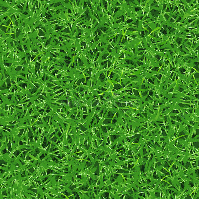 Seamless vector texture of fresh green grass on lawn royalty free illustration