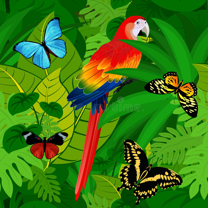 Seamless vector tropical rainforest Jungle background with parrot and butterflies stock illustration