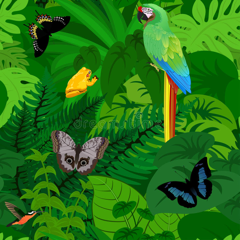 Seamless vector tropical rainforest Jungle background with parrot and butterflies royalty free illustration