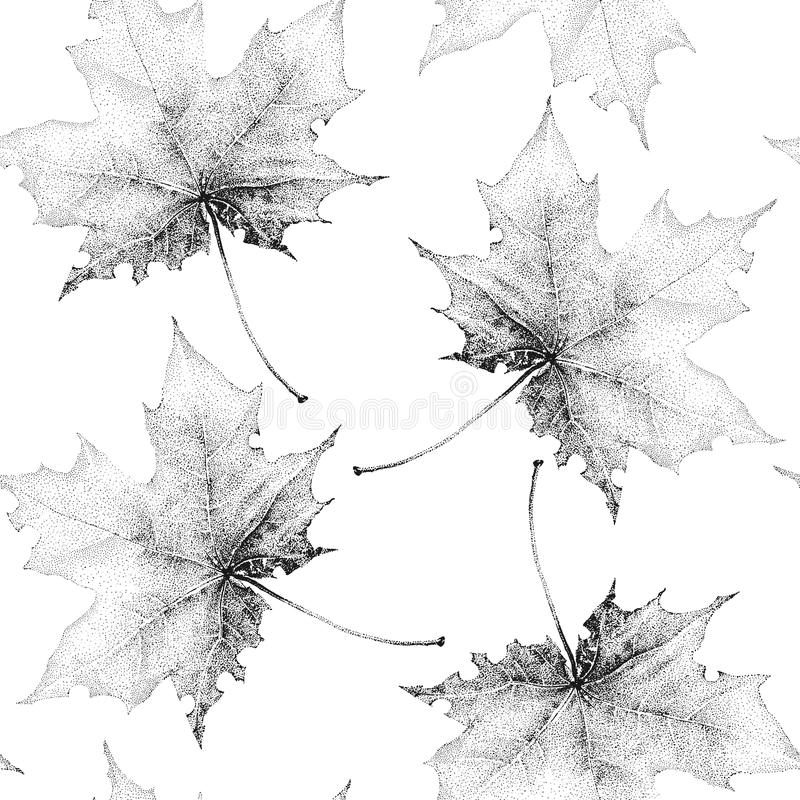 Seamless vintage pattern with a large black maple leaves on a white background stock illustration