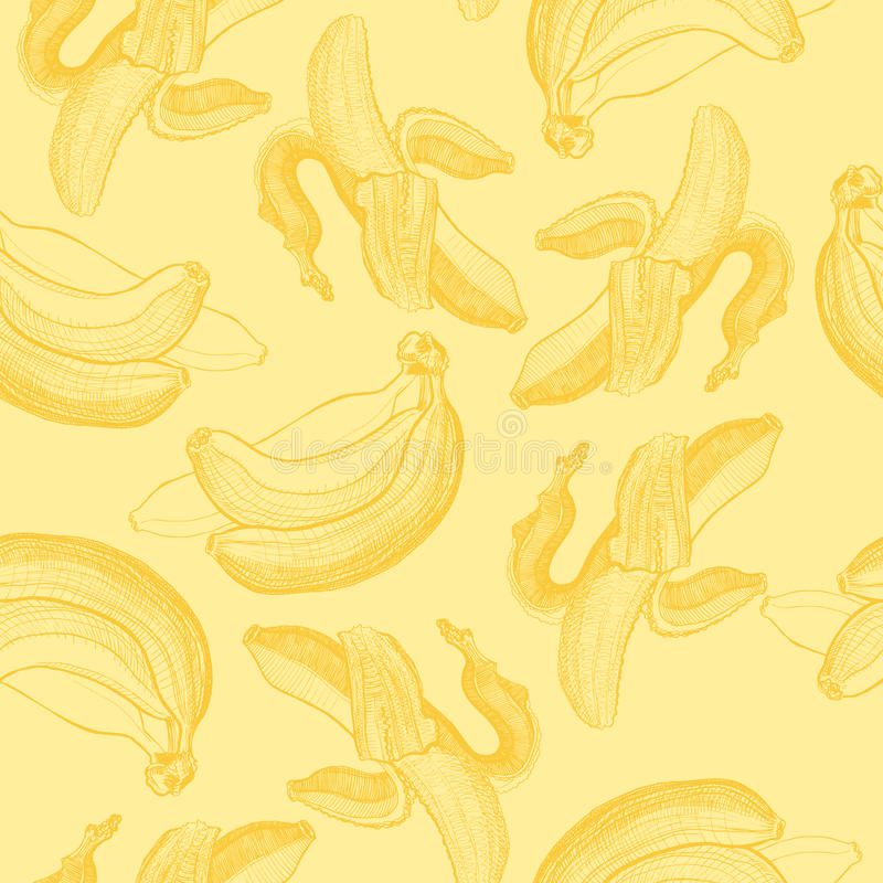Seamless wallpaper pattern with bananas engraving drawing. Fruit and food themes. Good for wallpaper, textile, background, design of wedding invitation, poster royalty free illustration